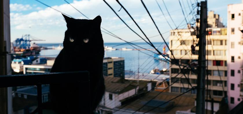 Anden, Valparaiso y Atacama: Bienvenidos a Chile!